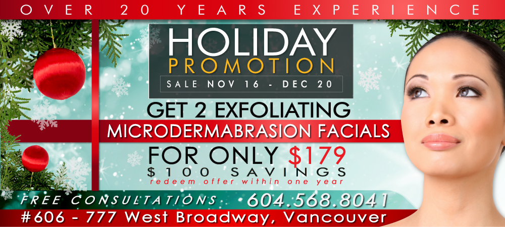 Christmas Holiday Promotion 2013